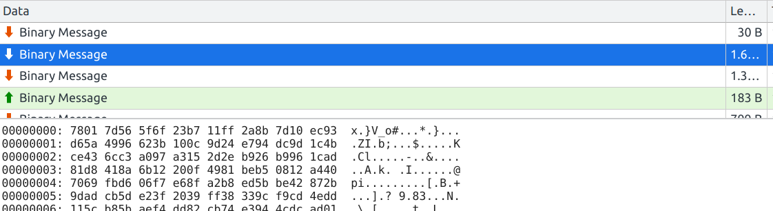 Developer tools showing binary messages being exchanged